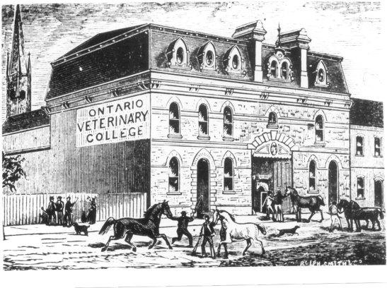 Ontario Veterinary College, 1877. Courtesy of OVC